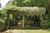 Conoce cómo acondicionar tu jardín para la estación de verano